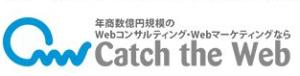 catchtheweb