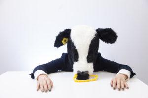 疲れている牛